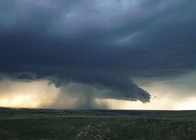 This photograph of a <a