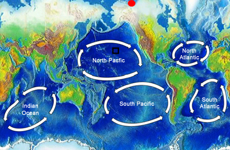 "<a href=""/earth/Water/ocean_gyres.html&edu=high"">Ocean gyres</a> are large swirling bodies of water that are often on the scale of a whole <a href=""/earth/Water/ocean.html&edu=high"">ocean</a> basin. Ocean gyres dominate the open ocean and represent the long-term average pattern of ocean <a href=""/earth/Water/ocean_currents.html&edu=high"">surface currents</a>. This image shows the five major ocean gyres. Gyres rotate in a clockwise direction in the Northern hemisphere and a counter-clockwise direction in the Southern hemisphere because of the <a href=""/physical_science/physics/mechanics/Coriolis.html&edu=high"">Coriolis Effect</a>.<p><small><em> Windows Original (Original map is from <a href=""http://commons.wikimedia.org/wiki/Main_Page"">Wikipedia Commons</a>)</em></small></p>"