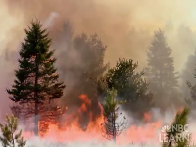 "<p>Something on Earth is always burning! NASA's Earth Observatory tracks wildfires across the world with <a href=""http://earthobservatory.nasa.gov/GlobalMaps/view.php?d1=MOD14A1_M_FIRE"" target=""_blank"">maps available for viewing</a> from 2000-present. Some wildfires can restore <a href=""/earth/ecosystems.html&edu=elem&dev="">ecosystems</a> to good health, but many can threaten human populations, posing a natural disaster threat.</p>