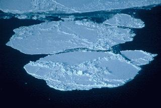 "The production of sea ice is also important to the layering of water in the Arctic Ocean. As <a href=""/earth/polar/sea_ice.html&edu=high"">sea ice</a> is made near the Bering Strait, salt is released into the remaining non-frozen water. This non-frozen water becomes very salty and very dense and so it sinks below the cold, relatively fresh Arctic water, forming a layer known as the <a href=""/earth/Water/salinity_depth.html&edu=high"">Halocline</a>. The Halocline layer acts as a buffer between sea ice and the warm, salty waters that have come in from the Atlantic.<p><small><em>   NASA</em></small></p>"