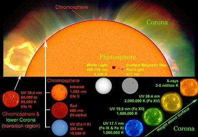 "Astronomers use different wavelengths of light and other <a href=""/physical_science/magnetism/em_radiation.html"">electromagnetic emissions</a> as <a href=""/sun/spectrum/multispectral_sun.html"">""windows"" into different regions of the Sun</a>. White light with a <a href=""/physical_science/basic_tools/wavelength.html"">wavelength</a> between 400 and 700 nanometers (nm) shows the <a href=""/sun/atmosphere/photosphere.html"">photosphere</a>, the visible ""surface"" of the Sun. Other wavelengths highlight different features of the Sun, such as its <a href=""/sun/sun_magnetic_field.html"">magnetic field</a>, the <a href=""/sun/atmosphere/chromosphere.html"">chromosphere</a> and the <a href=""http://www.windows2universe.org/sun/atmosphere/corona.html"">corona</a>.<p><small><em>Composite image courtesy of Windows to the Universe using images from SOHO (NASA and ESA), NCAR/HAO/MLSO, Big Bear Solar Observatory, and SDO/AIA.</em></small></p>"